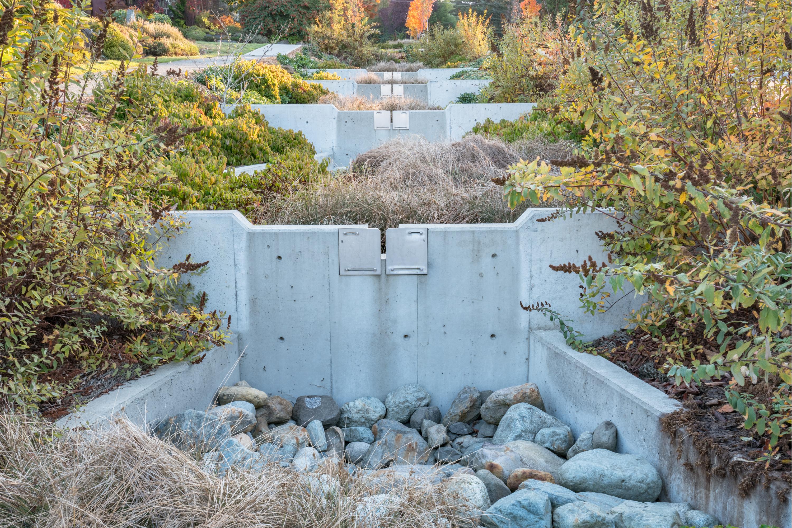 Venema Natural Drainage-11