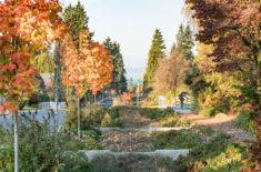 Venema Natural Drainage-3