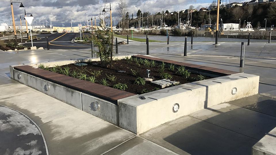 Port of Everett - Fishermen's Harbor Planting